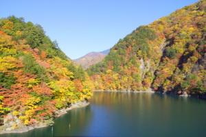 奈川渡ダム周辺の紅葉